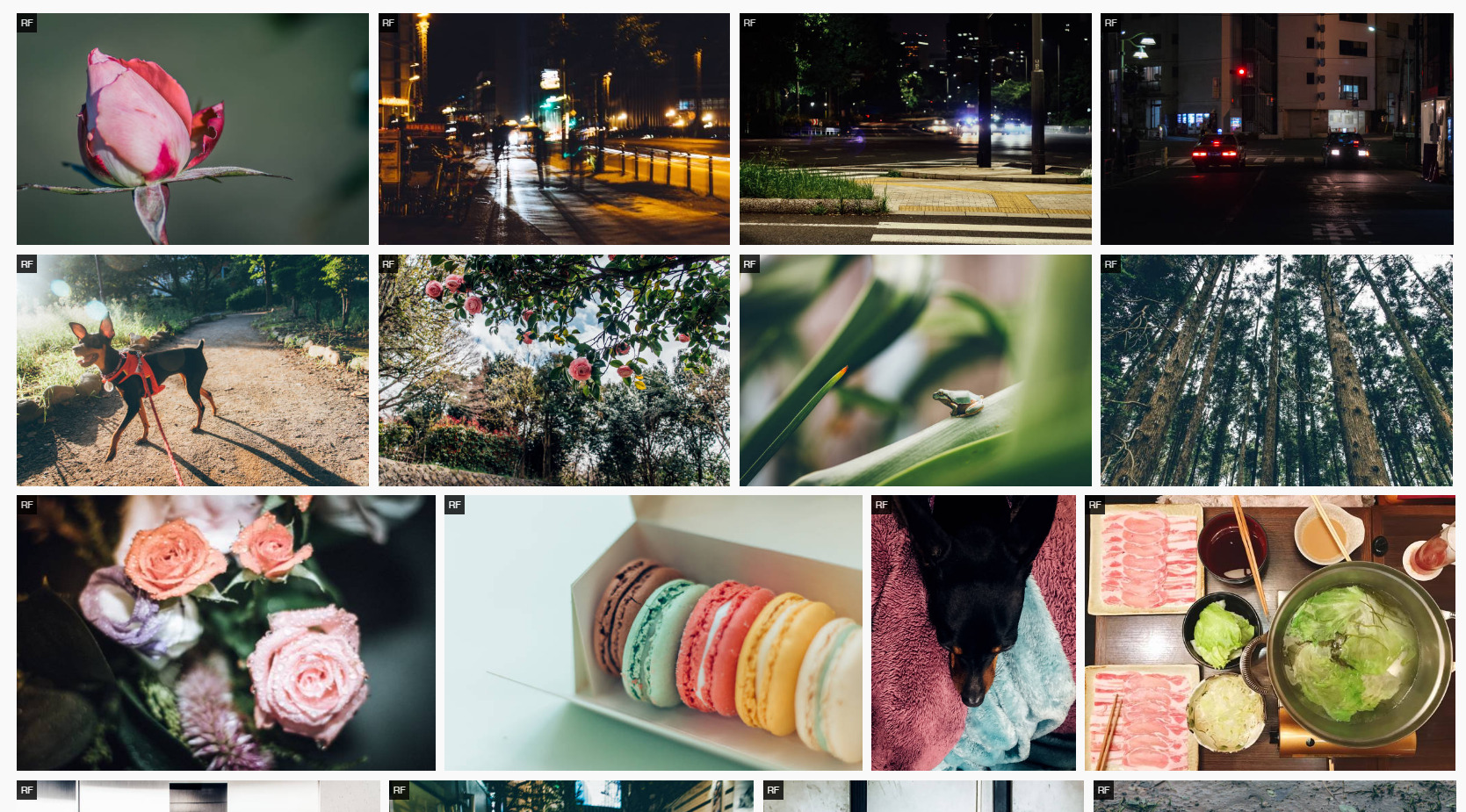 My new 7 photos uploaded to Getty images(x EyeEm)!Bud,Blurry cityscape,Dog,Flowers,Frog