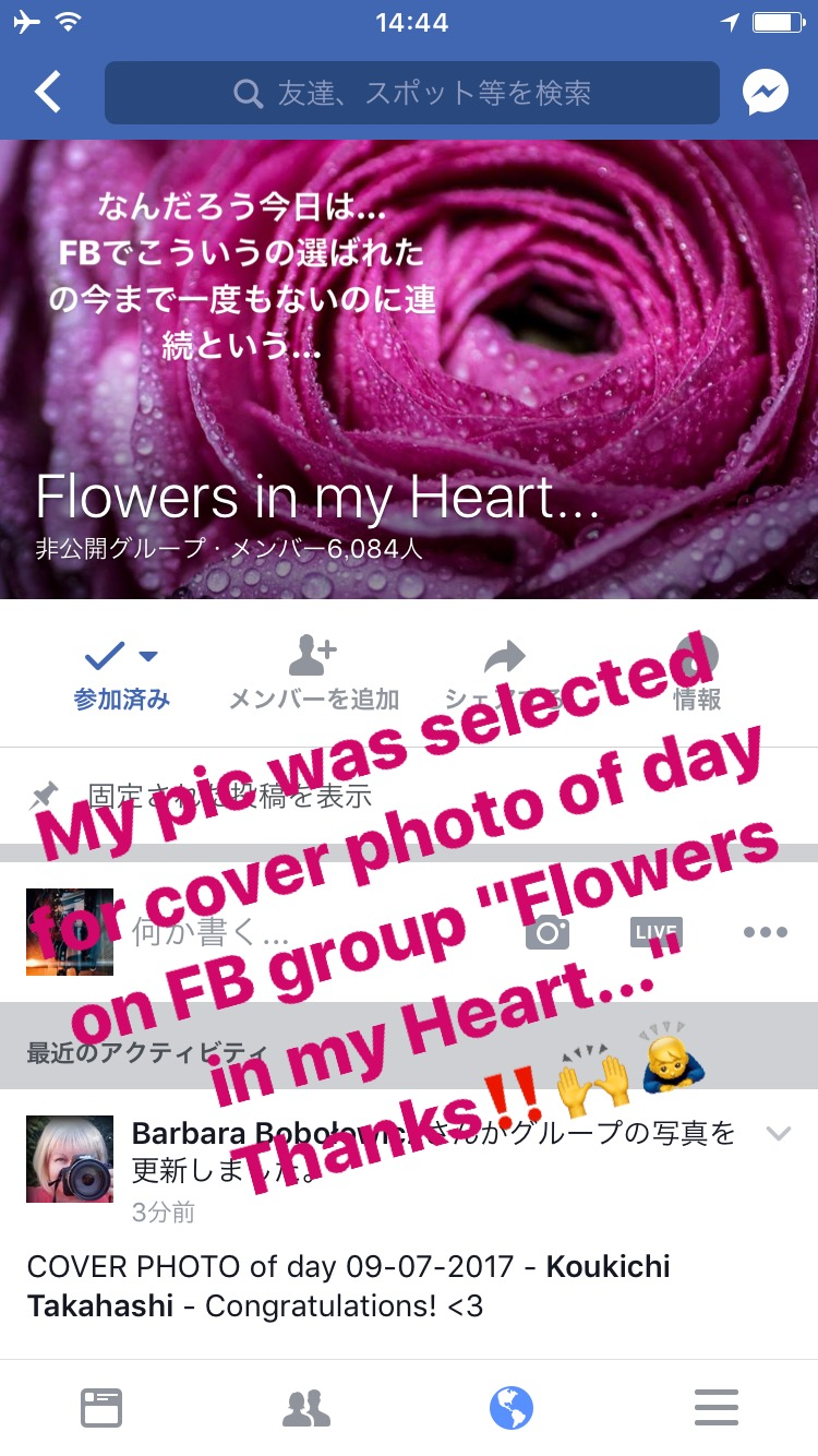 "花の写真がFACBOOKグループ「Flowers in my heart...」でカバーイメージに選ばれました!My pic was selected for cover image of Facebook group ""Flowers in my heart..."""
