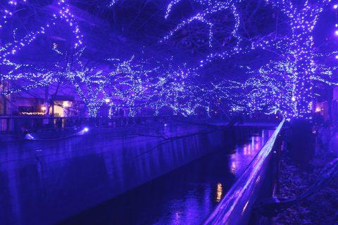 写真で振り返り:「Nakameguro 青の洞窟 2014」目黒川クリスマスイルミネーション !2017年も青の洞窟SHIBUYAとして開催決定!
