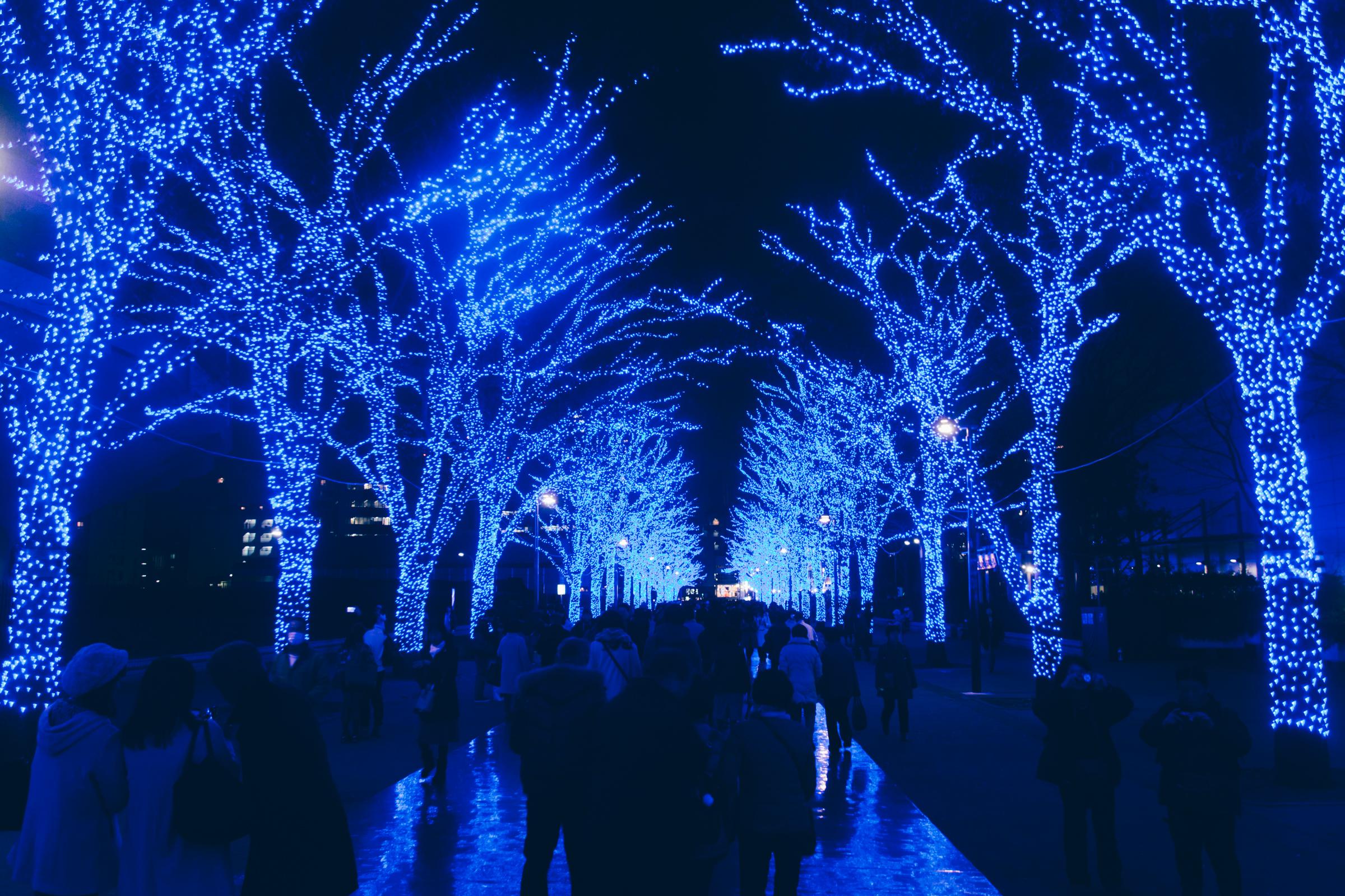 青の洞窟 SHIBUYAが2017年も開催決定!スナップマートに「渋谷クリスマスイルミネーション」写真を大量追加!I added stock photos Blue Grotto SHIBUYA to Snapmart!Christmas illumination Blue Grotto SHIBUYA 2017