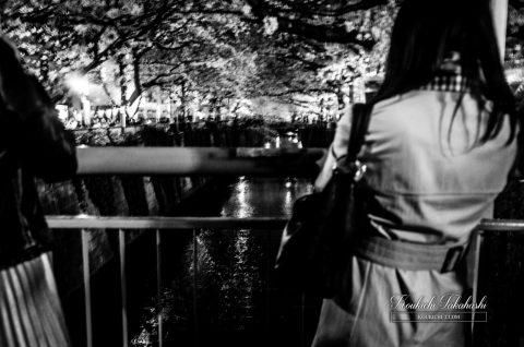 モノクロ 女性の後ろ姿 中目黒 目黒川