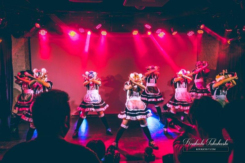 仮想通貨少女コインチェックユーザー無料ライブ南青山。写真/動画潜入レポート一部アップ!新メンバー追加決定、3月15日開催ライブで発表!