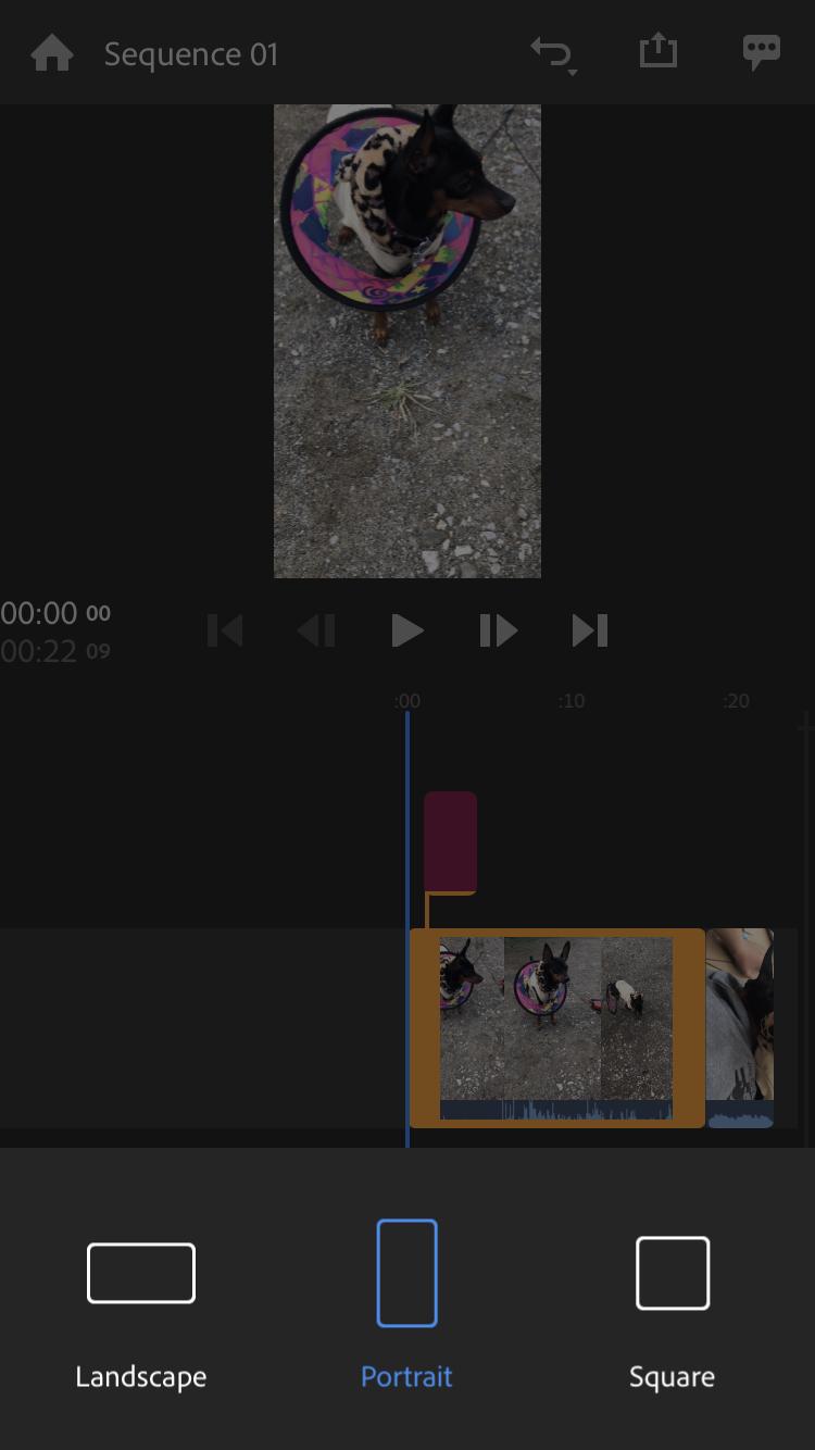 Adobe Premiere Rushはポートレート(縦型)モードの枠も用意されてるのでランドスケープ(横向き)撮影動画のトリミングもサクッと可能。