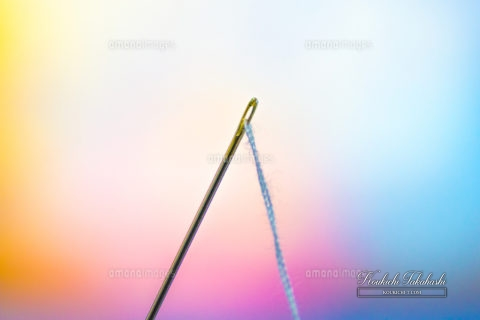 Close-up Of Needle And Thread Against Colorful Background EyeEm x amanaimages Koukichi Takahashi