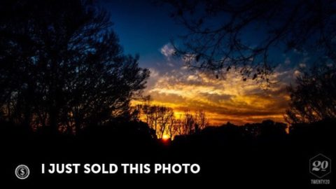 Twenty20で最近売れた写真。海外ストックフォトサイト/スマホアプリ売上/利益メモ
