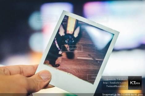 最近スナップマートで売れたありのまま、ふつうの写真。Snapmart写真素材ストックフォト販売履歴 2019年7月。AMPストーリーズ-2