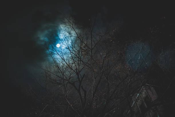 インスタ都市伝説「不具合編 : 魔の14日」はインスタグラムダウン?Instagramの話題/小ネタ 2019