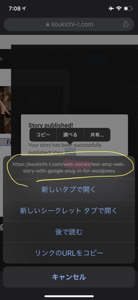 Google公式 ウェブストーリー(旧AMPストーリー)をかんたん作成できるWordPressプラグイン「Web Stories」が公開!ウェブストーリー作ってみた。スマホブラウザから無理やり
