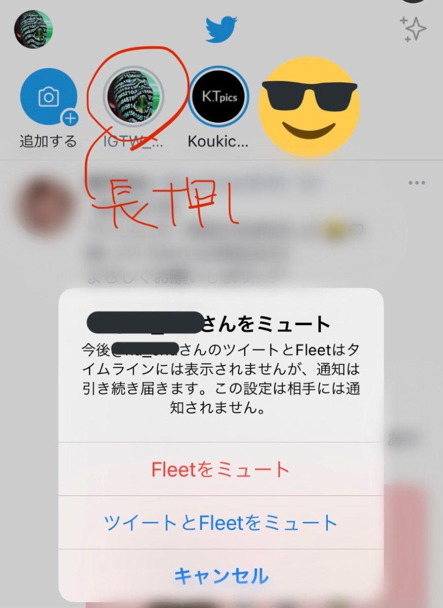 ツイッター、インスタストーリーみたいなフリート日本公開!仕様や使い方解説。既読足跡機能/ミュートのやり方ほか。Twitter新機能アップデート最新ニュース 2020年11月11日