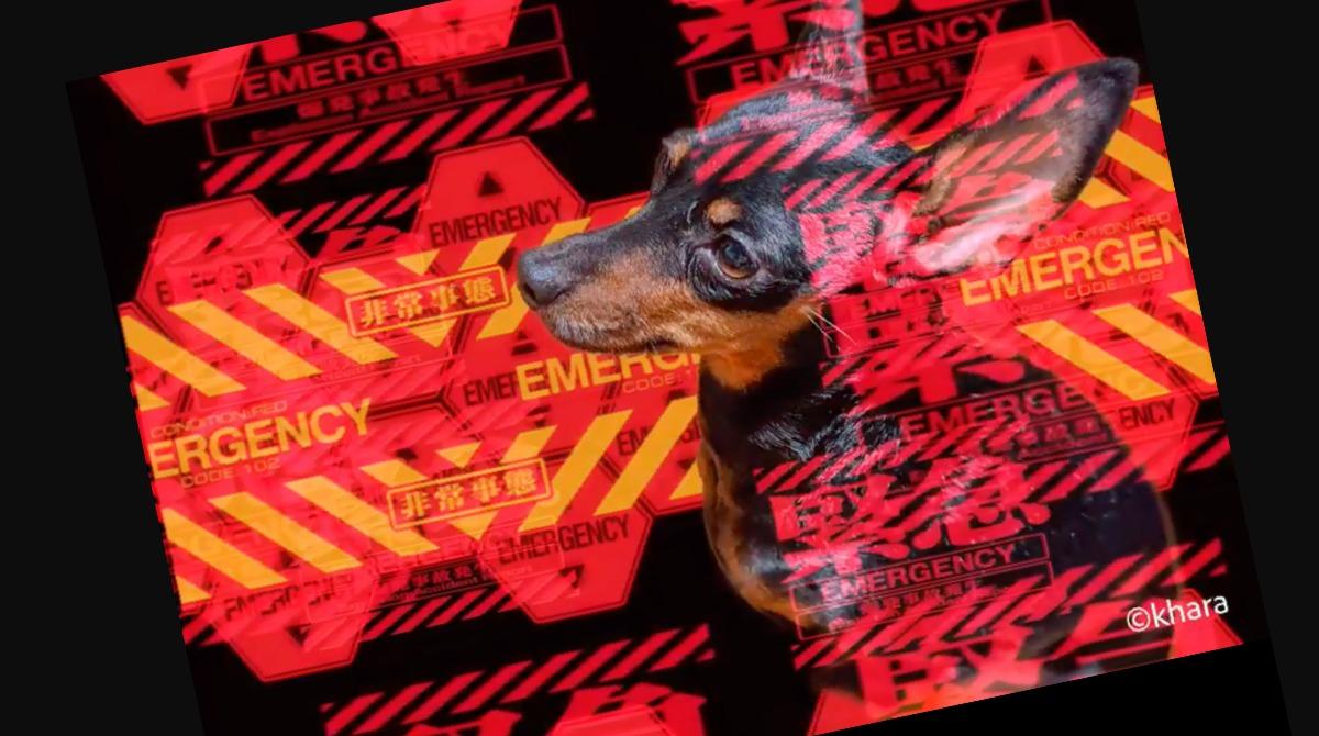 フォトショップカメラにエヴァンゲリオンレンズ第二弾登場!緊急事態/シンジ&アスカ/初号機の3種。Adobe最新ニュース2020