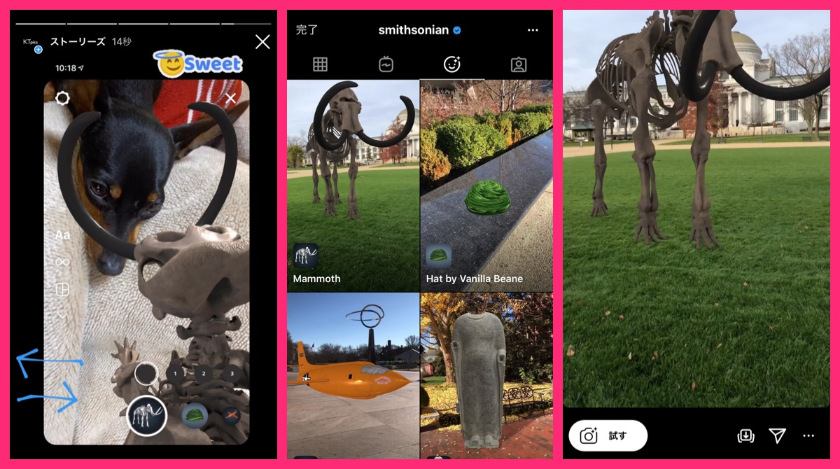 Instagram rolled out online exhibits of the Smithsonian with AR effects.Instagram latest news Dc 2020